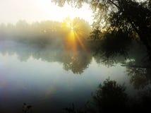 在池塘的日出 库存图片