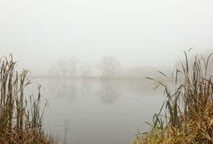在池塘的有雾的11月早晨 免版税库存照片