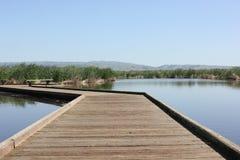 在池塘的木板走道 库存图片