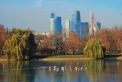 在池塘的鸟 商务中心城市莫斯科 库存图片