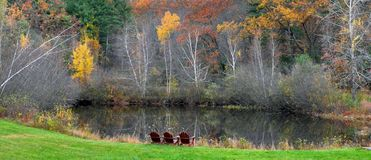 在池塘的Chillin -克林顿, Ma埃里克L 约翰逊摄影 免版税库存图片