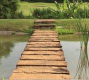 在池塘间的石路径 免版税图库摄影