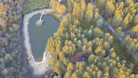 在池塘附近的一个小的房子,包围由树和草 录影 池塘的顶视图在房子附近的森林 库存图片