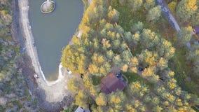 在池塘附近的一个小的房子,包围由树和草 录影 池塘的顶视图在房子附近的森林 免版税库存照片