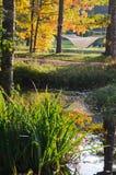 在池塘附近的吊床在秋天公园 库存照片