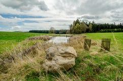 在池塘附近的大石头 库存照片