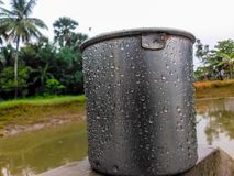 在池塘附近的水杯子在一下雨天 免版税库存照片