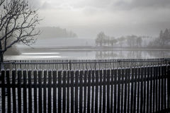 在池塘附近的篱芭在冬天 库存照片