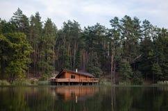 在池塘 免版税库存照片