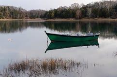 在池塘 图库摄影