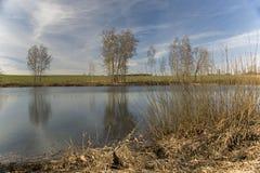 在池塘Bachracek的看法在春天 库存图片