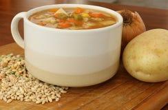 在汤杯子的蔬菜汤有菜和豆类的 库存图片