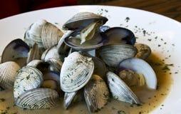 在汤的新近地被蒸的蛤蜊 免版税图库摄影