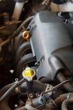 在汽车的冷却系统 库存图片