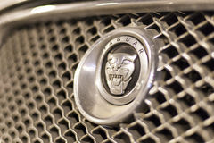 在汽车的捷豹汽车商标 库存图片