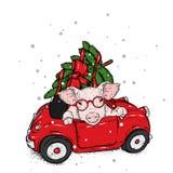 在汽车的猪有圣诞树的 克劳斯・圣诞老人 也corel凹道例证向量 甜小的猪 新年` s和圣诞节 库存图片