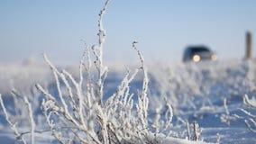 在汽车的高速公路路线旅行冬天运动的旁边冻草 库存图片