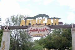 在沃思堡动物园的非洲大草原,沃思堡,得克萨斯 免版税图库摄影