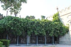 在沃龙佐夫宫殿附近的公园,克里米亚 图库摄影