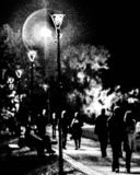 在沈默的夜 免版税库存照片