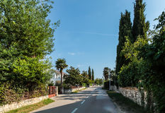 在沈默国家街道上的看法有粗糙的石头和绿色篱芭的 库存图片