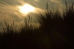 在沙丘上的晚上太阳 库存照片