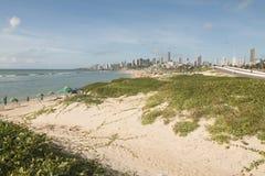 在沙丘海滩的新生风景 免版税图库摄影