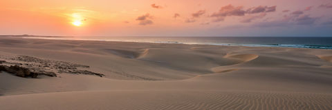 在沙丘的日落在泰国党海滩Praia de泰国党在Boavist 免版税库存照片