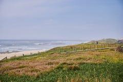 在沙丘的植被在海前面 库存图片