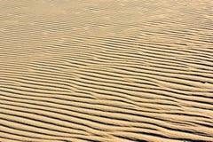 在沙丘的沙子 库存图片