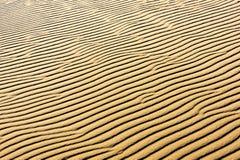 在沙丘的沙子 库存照片