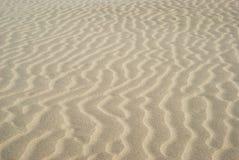 在沙丘的波纹 库存图片