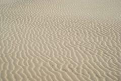 在沙丘的波纹 免版税库存图片