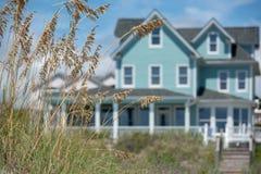 在沙丘的海草与小野鸭沿海海滨别墅在背景中 库存图片