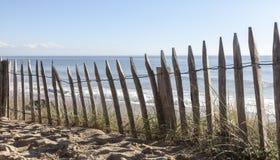 在沙丘的篱芭 库存图片