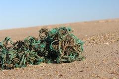 在沙丘的老被风化的钓鱼的绳索在含沙沿海海洋海滩 库存照片