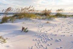 在沙丘的脚印在日落 免版税库存照片