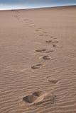 在沙丘的脚印 免版税库存照片