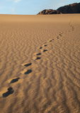 在沙丘的脚印 Death Valley 库存照片