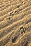 在沙丘的脚印 Death Valley 免版税库存图片