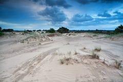 在沙丘的被覆盖的天空 免版税库存图片