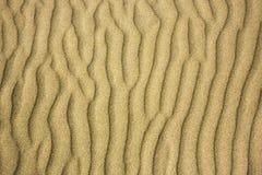 在沙丘的起波纹的风样式 免版税库存图片