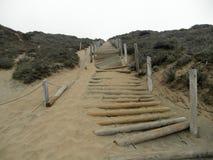 在沙丘的边的用旧了的木绳索楼梯与pl的 免版税库存图片