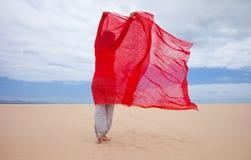 在沙丘的风 图库摄影