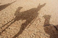 在沙丘的骆驼阴影在撒哈拉大沙漠 免版税图库摄影
