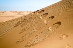 在沙丘,阿曼沙漠的步骤 免版税图库摄影