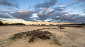 在沙丘Hoge Veluwe的日落 库存照片