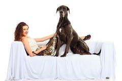在沙发的狗 免版税库存图片