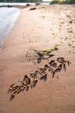 在沙子写的词夏天在海滩 库存图片