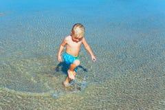 在沙子底部的单一鱼 免版税库存图片